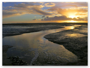 Digital SLR photography, mudflats sunset