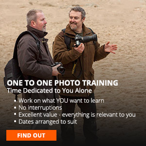 One on One photo training