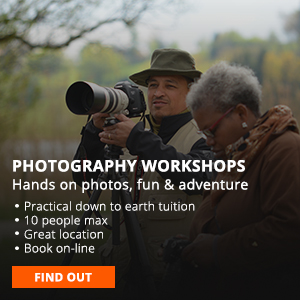 photography workshops