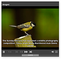 sunday mercury  photography competition